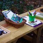 Nature Study Bench