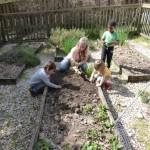 Garden - Working with a Teacher